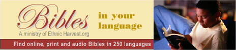 Bibles in Your Language
